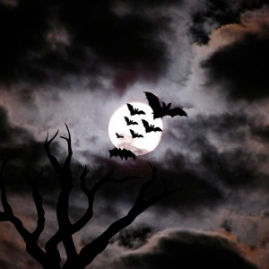 Bats and Moon spooky picture